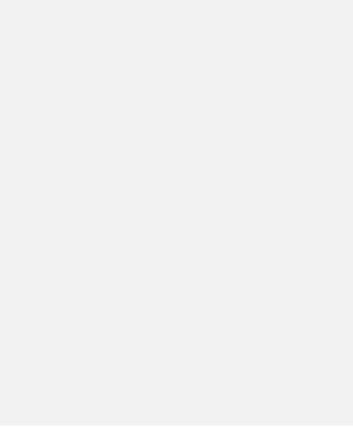 IRRE PARABEL Logo